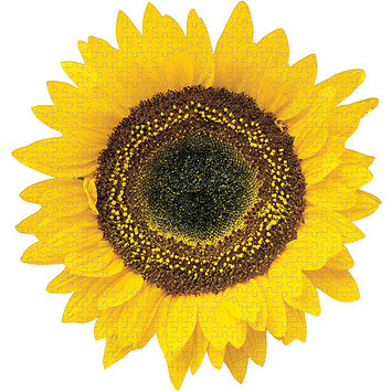 Paper House Sunflower Jigsaw Shaped Puzzle