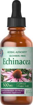 Echinacea Liquid (500 mg per 1 ml), 1 oz, Good 'N Natural
