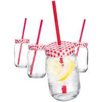Shopgetorganized Set Of 4 Gingam Glasses With Straws