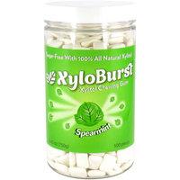 XyloBurst Spearmint Xylitol Chewing Gum, 500 count, 26.45 oz