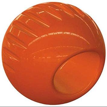 Bionic Ball Dog Ball X-Large