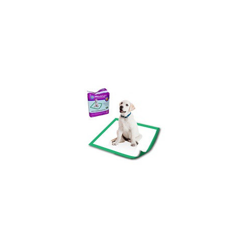 PoochPad Products Disposable Potty Pad (Set of 20)