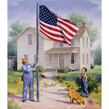 American Pride Jigsaw Puzzle 550 Piece SOIY6843 SunsOut