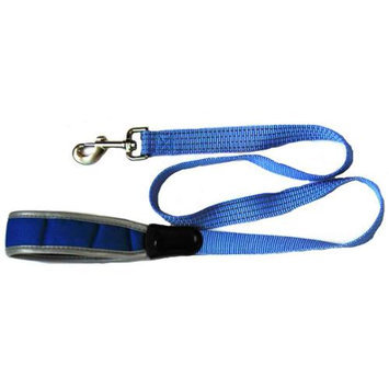 Iconic Pet 91843 Reflective Nylon Leash & Safety Lead For Pets Blue - X Small