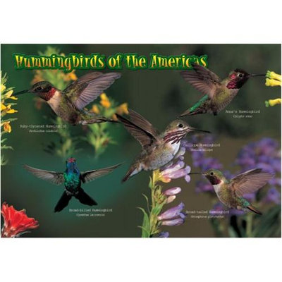 Impact Photographics IMP52116KZ Kids Puzzle Hummingbirds