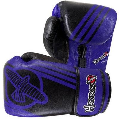 Hayabusa Ikusa Recast 14oz Gloves