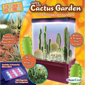 Dunecraft, Inc Dunecraft Cactus Garden Science Kit DUNX0543 DUNECRAFT INC.