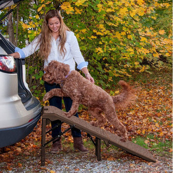 Pet Gear Free Standing Extra Wide Carpeted 55
