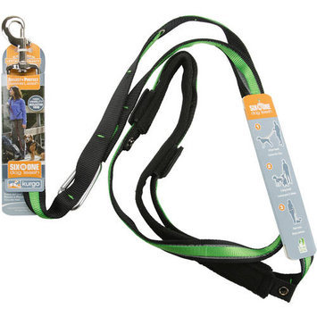 Kurgo Reflect and Protect Quantum Leash Color: Grass Green
