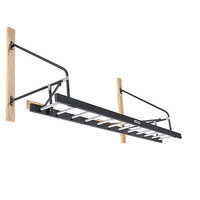 Powermax Wall Attached Ladder