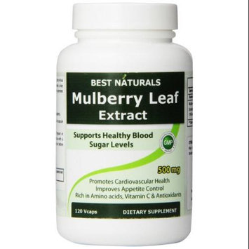 Best Naturals #1 Mulberry Leaf Extract (White Mulberry) - 500 mg - 120 Vcaps