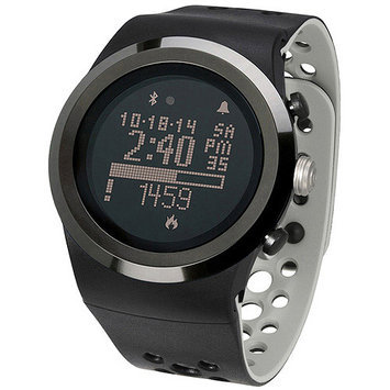 LifeTrak Brite R450 LifeTracker (Black/Titanium)