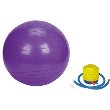 Sivan Health & Fitness 65cm Purple Yoga Stability Ball and Pump Bundle