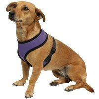 OxGord Pet Control Harness for Dog & Cat Easy Soft Walking Collar - Vehicle Safety Strap Vest - Medium Purple