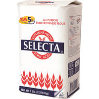 Selecta All Purpose Enriched Wheat Flour, 5 lbs