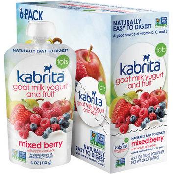 Hyproca Nutrition Usa Kabrita Goat Milk Mixed Berry Yogurt and Fruit - 6 Pack