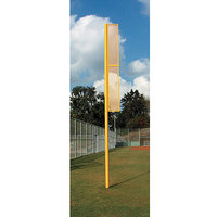 SSG / BSN Professional 15 ft. Foul Pole