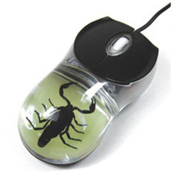 Ed Speldy East CM02 Real Bug C