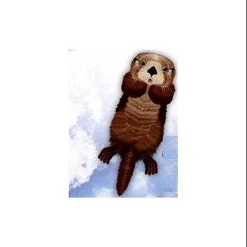 Brain Storm Kites 70903 WNS SeaLife 50x21 Nylon Otter