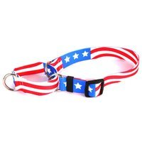 Yellow Dog Design M-AA100XS Americana Martingale Collar - Extra Small