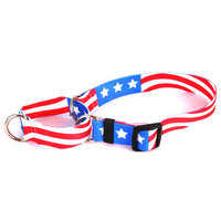 Yellow Dog Design M-AA100XS Americana Martingale Collar - Extra Small