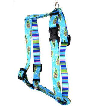 Yellow Dog Design H-BOP101SM Brown Paisley Roman Harness - Small/Medium