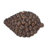 Fantastic Craft Pinecone Novelty Candle Size: 4.25