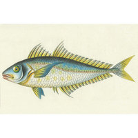 Belle Banquet Bluefish Stain-resistant Reusable Paper Placemats (Set of 6)