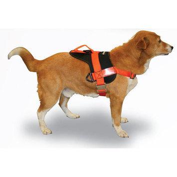 Fusion Pet Raider Dog Training Harness