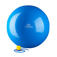 Black Mountain Products 2000 lbs Anti Burst Exercise Stability Ball with Pump Color: Purple
