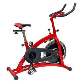 Hupa International Inc Body Champ Indoor Cycle Trainer