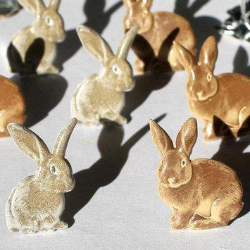 Eyelet Outlet Brads-Rabbits Brown