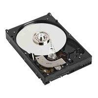Dell 1GB 2.5