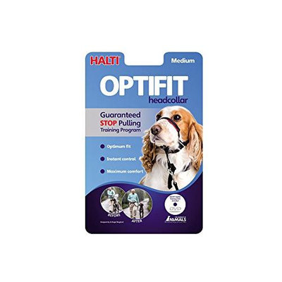 The Company Of Animals Halti Optifit Head Collar for Dogs Medium