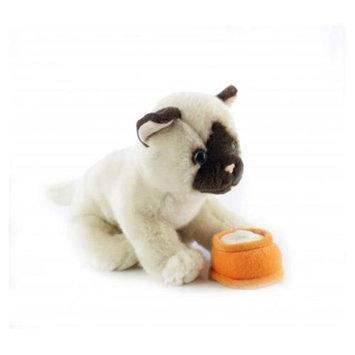 Teeboo 91220B-BGC Kitten - Siamese Beige Plush Toy