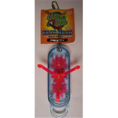 Lucky Bird Toys 251-00043 Luck