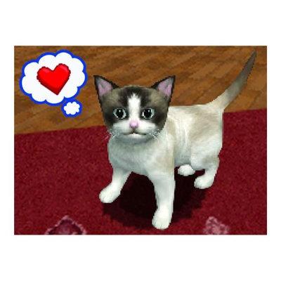 Nintendo Petz: Catz 2 (used)