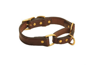 Tory Leather Martingale Leather Dog Collar