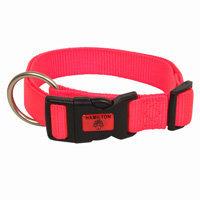 Hamilton Adjustable Nylon Dog Collar in Orange, Large, 16 -26 L X 1 W