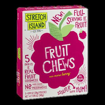 Stretch Island Fruit Chews Pouches Raz-mataz Berry - 5 PK