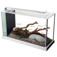 Fluval Spec V Aquarium Kit - 5 gal. - White