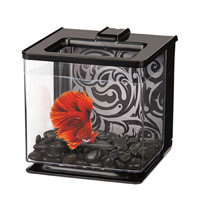 Marina Betta EZ Care Black Aquarium Kit, 0.7 Gallon ()