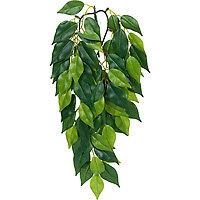 RC Hagen PT3030 Exo Terra Silk Terrarium Plant Small Ficus