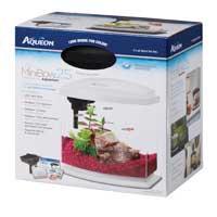 Aqueon MiniBow White LED Desktop Fish Aquarium Kit, 2.5 galllon ()