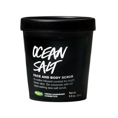 LUSH Ocean Salt Face and Body Scrub
