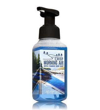 Bath & Body Works® CRISP MORNING AIR Gentle Foaming Hand Soap