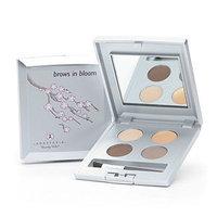Anastasia Brows in Bloom Grooming Kit