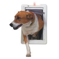 Perfect Pet Medium All Weather Door with Protector Alarm Slide