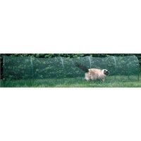Kittywalk Systems Inc Kittywalk Outdoor Net Cat Enclosure for Lawns