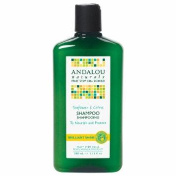 Andalou Naturals Healthy Shine Shampoo